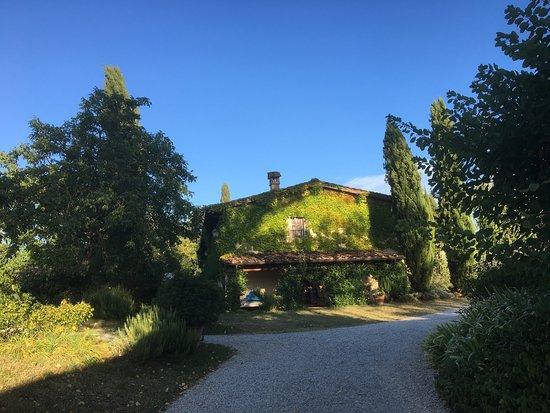 Borgo San Lorenzo, Italia: photo3.jpg