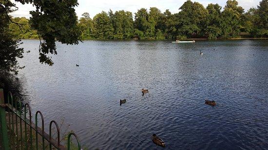 Ilford, UK: 20160820_181653_large.jpg