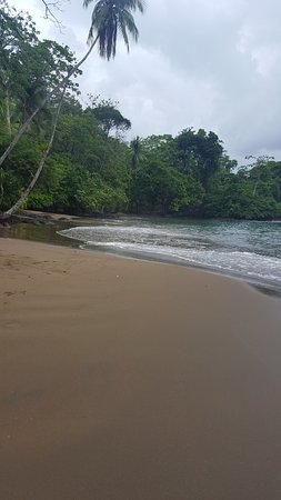 Foto Copa de Arbol Beach and Rainforest Resort