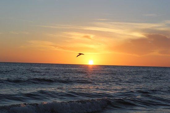 Sea Winds of Marco: photo0.jpg