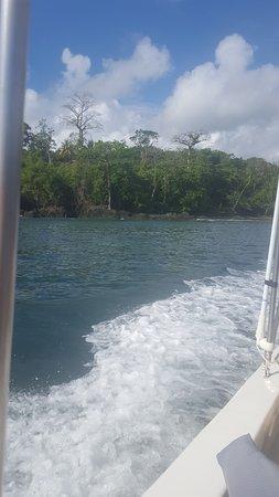 Copa de Arbol Beach and Rainforest Resort: boat ride