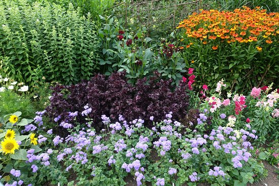 Haywards Heath, UK: Ein wunderschöner englischer Garten