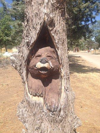 Brite Lake Tehachapi California USA