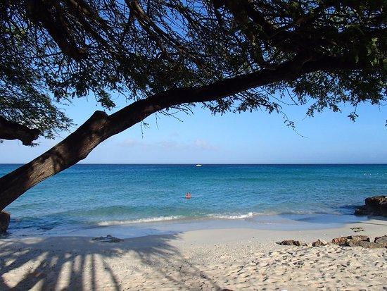 Bananas Apartments: Boca Catalina beach, a 5 minutes walk