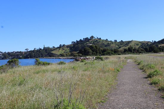 Richmond, Californie : Knox-Miller Regional Shoreline May 2016