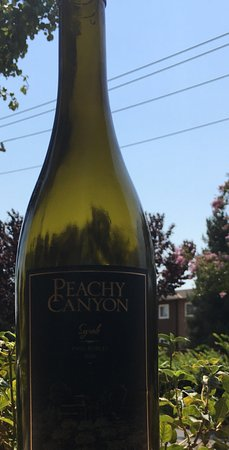 Peachy Canyon Winery : My Syrah!
