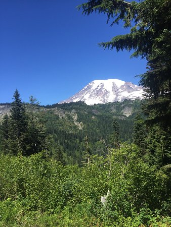 Mount Rainier: photo0.jpg