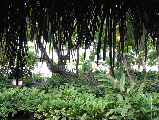 Esterillos Oeste, Costa Rica: photo0.jpg