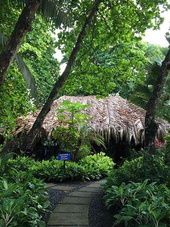 Esterillos Oeste, Costa Rica: photo2.jpg