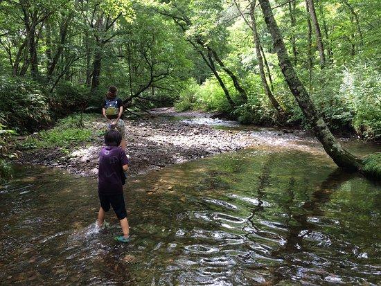 Togakushi Camping Area : 浅い川なので小さい子供が遊べます!
