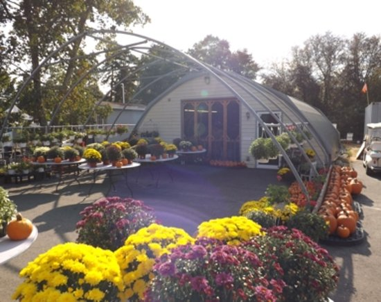 Lacey Township, NJ: Jersey Grown Veggies, Flowers and Fruit