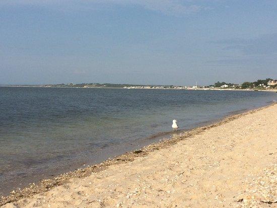 Meschutt Beach (Hampton Bays, NY): UPDATED 2018 Top Tips