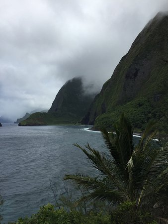 Kalaupapa National Historical Park : Highest Sea cliffs in the world