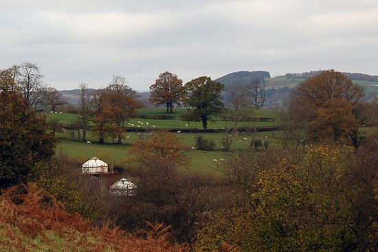 Dolanog, UK: The views are great from the yurts!