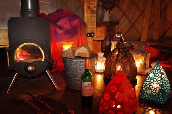 Dolanog, UK: The log burner will keep you warm and toasty!
