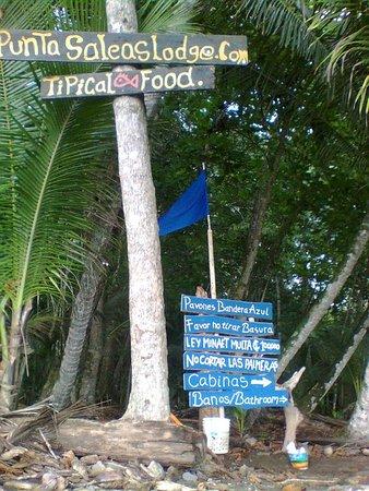 Playa Zancudo, Costa Rica: Logramos la playas mas limpias