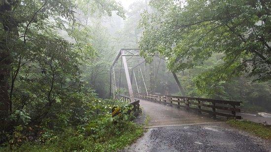 그레이트 스모키 산맥 국립공원(및 인근) 사진