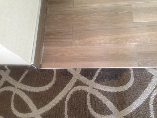 you can already see water damages along wall from flooding carpet rh tripadvisor ca