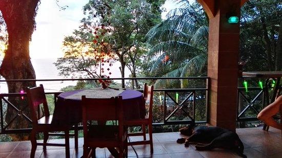 Mango Moon Villa: lobby