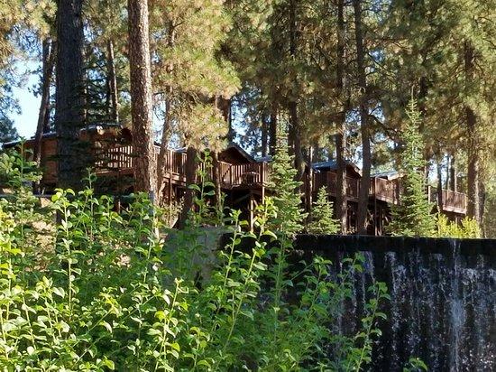 Cheney, WA: Cabins