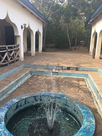 Gede, كينيا: photo2.jpg
