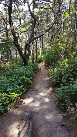 Florence, Oregon: 20160820_121935_large.jpg