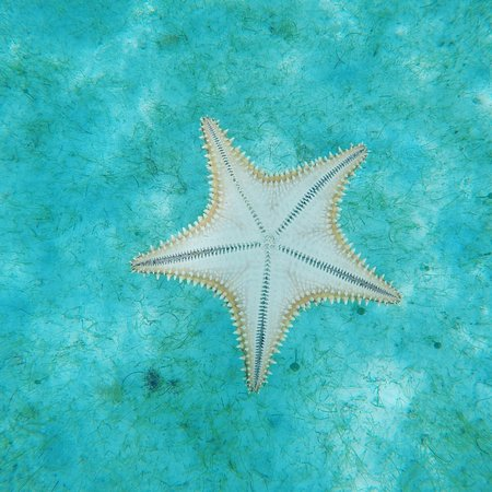 Jolly Harbour, Antigua: IMG_20160820_174354_large.jpg