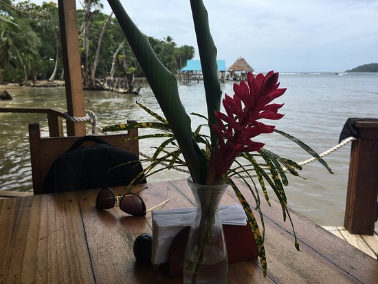 Carenero Island, Panama: photo0.jpg