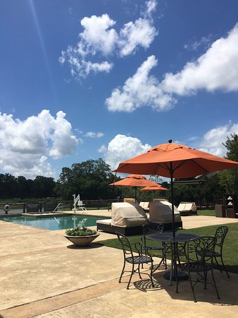Cedar Creek, TX: Adult pool at Spa Django.