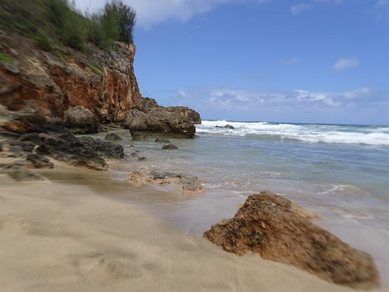 CJM Country Stables: beach