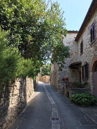 Asciano, Italia: A beautiful little village with 25 people and one very friendly dog!