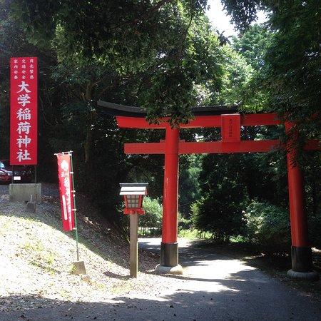 Kurume, Japonya: 大学稲荷への入り口(鳥居から先のダラダラ坂も車で行けます)