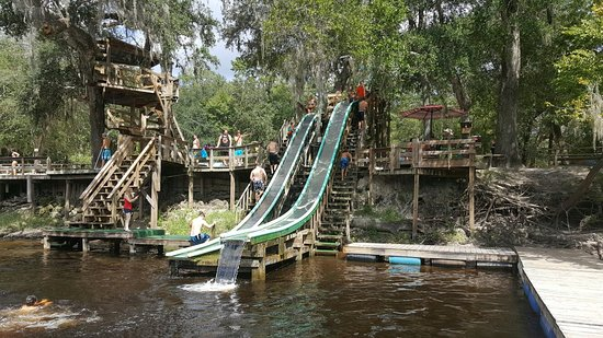 Branford, فلوريدا: 20160820_112233_large.jpg