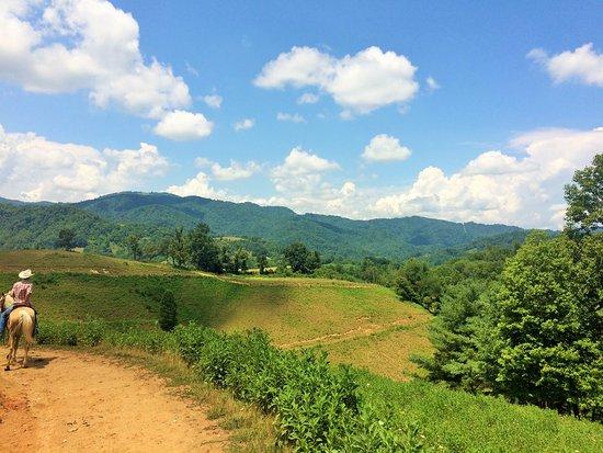 Marshall, NC: Slim at Sandy Bottom Trails