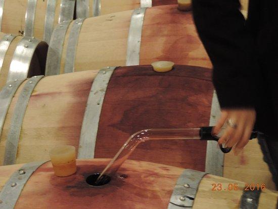 Agrelo, Argentina: Cecília extraído vinho das barricas para degustação...