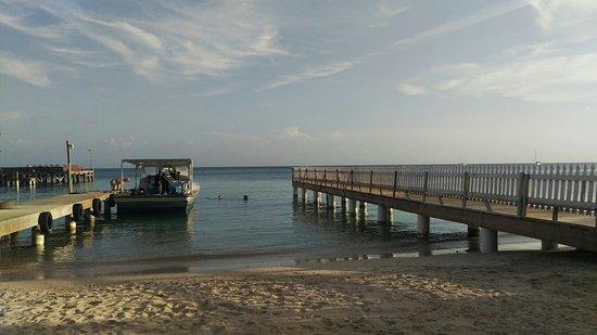 Utila, Honduras: IMAG1877_large.jpg