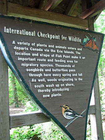 "Fish Point Nature Reserve: ""International Checkpoint for Wildlife"""
