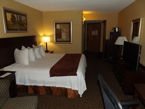 Eagan, MN: Room with one king-size bed at Best Western at Dakota Ridge