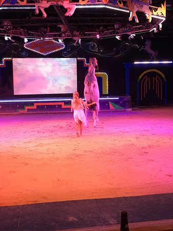 Delavan, WI: The Dancing Horses Theatre