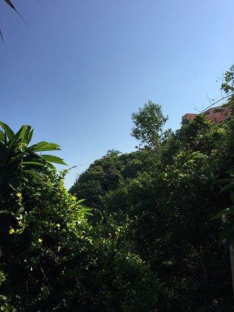 Capella Ixtapa: photo1.jpg