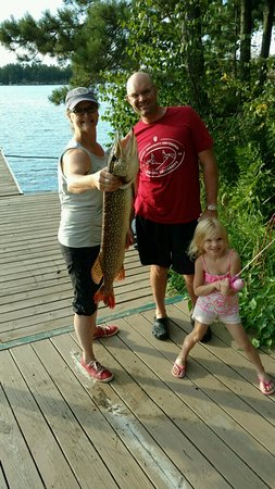 """Kabetogama, MN: 33"""" pike caught off dock on 3-inch princess pole by our five year-old"""