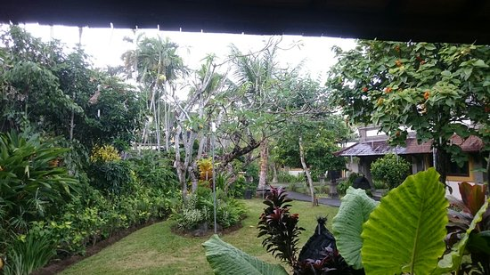 Hotel Vila Lumbung: DSC_0255_large.jpg
