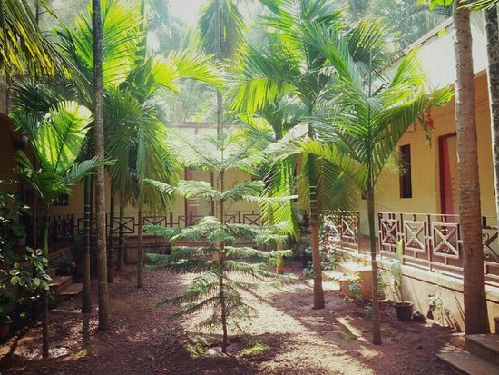 Naughty waves beach resort picture of naughty waves - Resorts in diveagar with swimming pool ...
