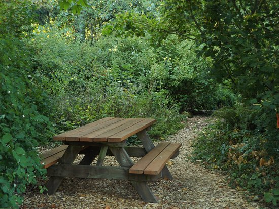 Brush Prairie, WA: Enjoy a picnic at the Alpine Rock Garden