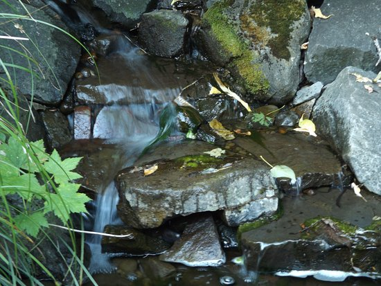 Brush Prairie, WA: A small waterfall in the Alpine Rock Garden