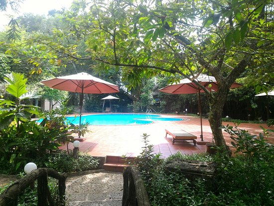 Lotus Resort  Ph U00fa M U1ef9