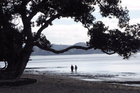 Foto de Whangaparaoa