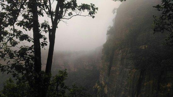 Tamia, الهند: P_20160812_065805_large.jpg