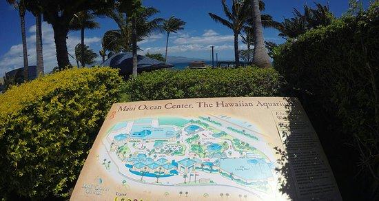 Wailuku, Hawái: Maui Ocean Center
