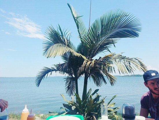 Ssese Islands, Uganda: IMG-20160818-WA0015_large.jpg